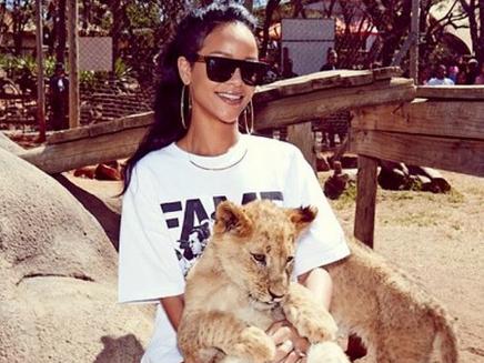 Rihanna : son safari en Afrique du Sud