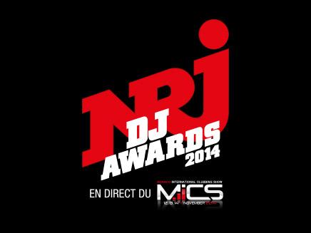 Martin Garrix, Steve Aoki, Bob Sinclar : Ils seront tous aux NRJ DJ AWARDS 2014!