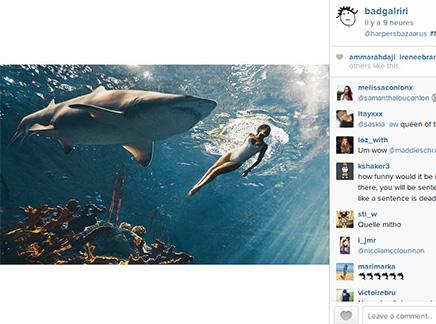 Rihanna nage avec les requins!