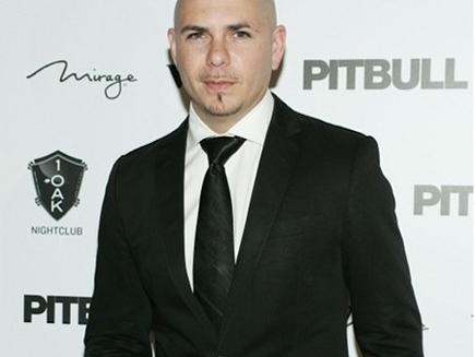Pitbull passe le réveillon avec ses fans !