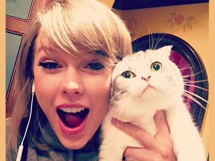 Taylor Swift : sa tournée lui rapporte 173 millions de dollars!